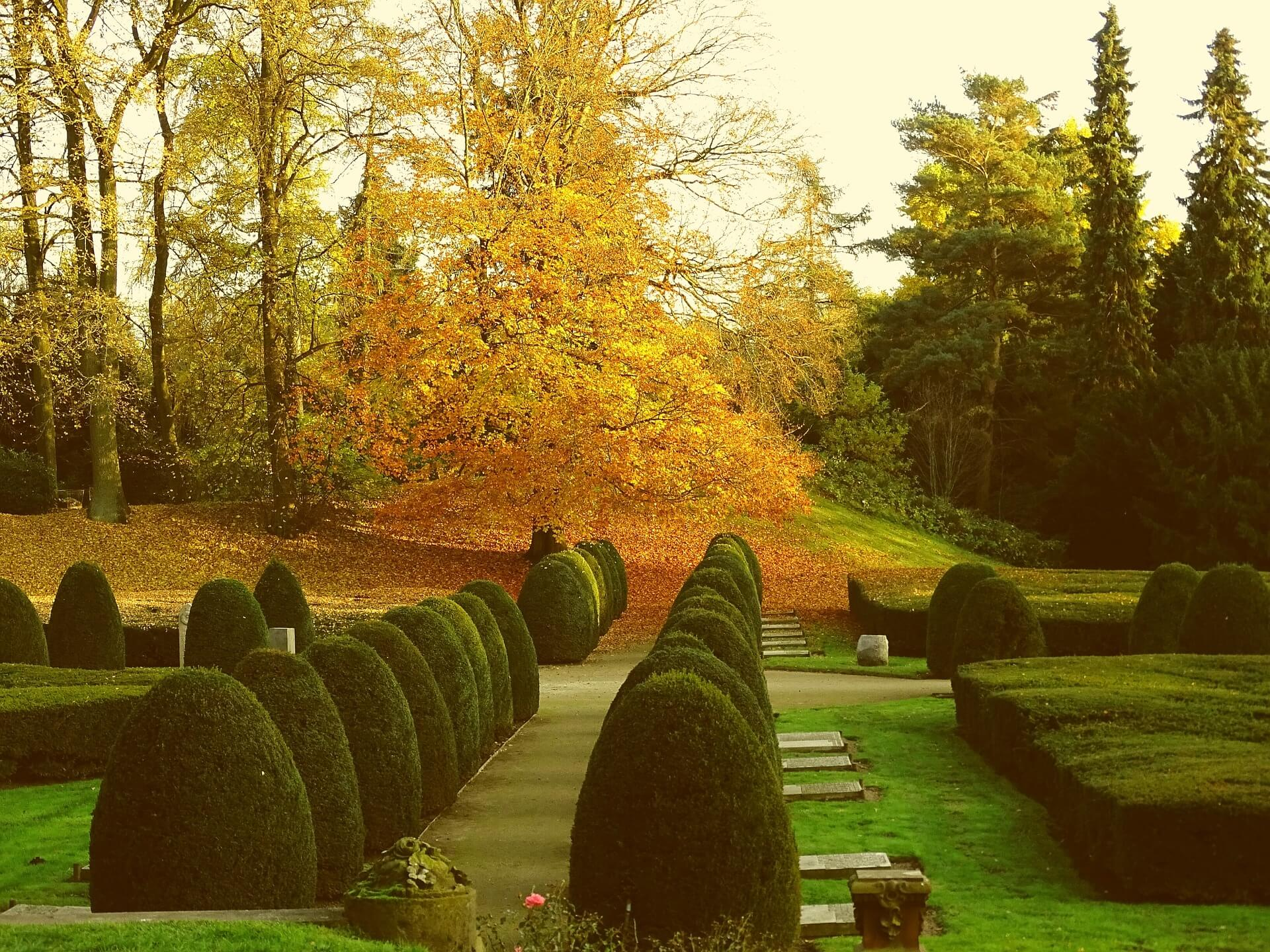 Ohlsdorf Cemetery – A Different Kind of Park in Hamburg, Germany
